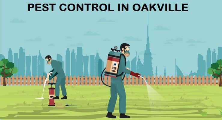 Want To Get Rid of Pests in Oakville?
